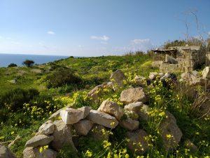 Coast near Birzebbuga, South Malta