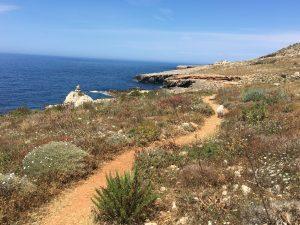 Path by Hagar Qim - walk 7